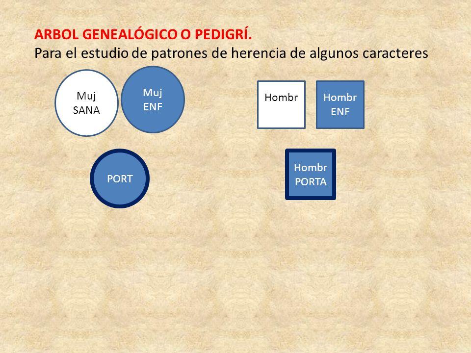 ARBOL GENEALÓGICO O PEDIGRÍ. Para el estudio de patrones de herencia de algunos caracteres Muj SANA Hombr SANO Muj ENF Hombr ENF PORT Hombr PORTA