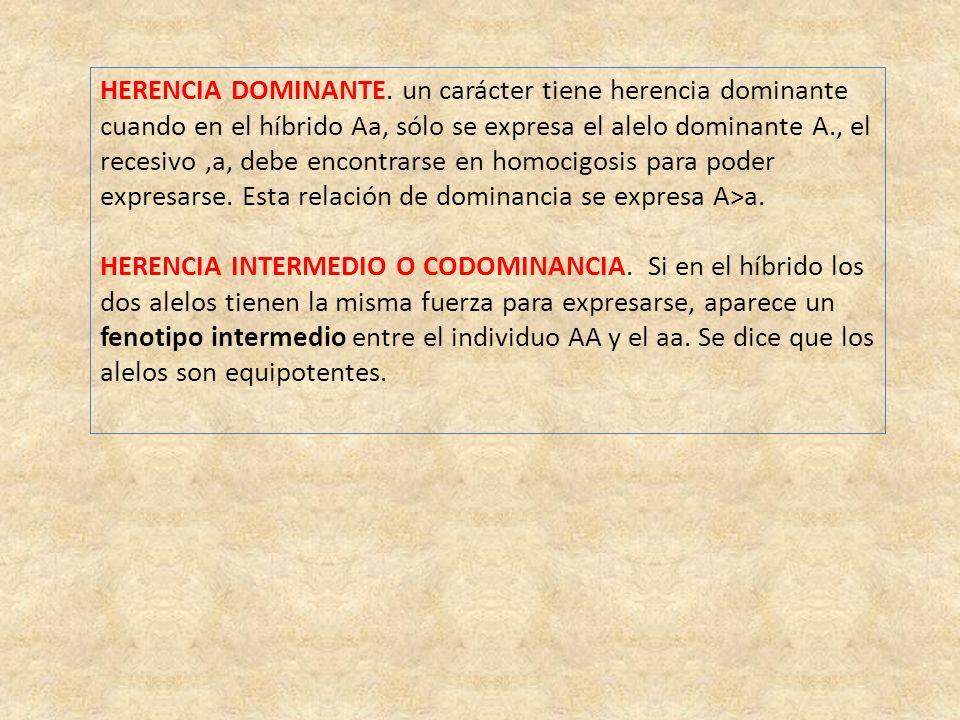 HERENCIA DOMINANTE. un carácter tiene herencia dominante cuando en el híbrido Aa, sólo se expresa el alelo dominante A., el recesivo,a, debe encontrar