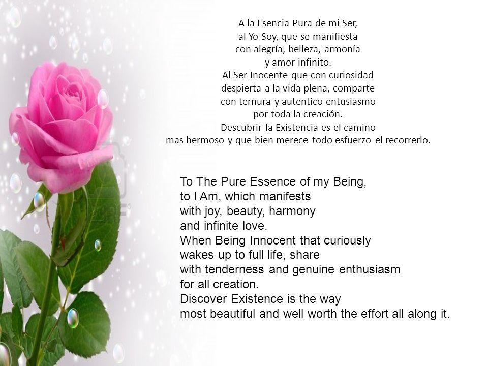 A la Esencia Pura de mi Ser, al Yo Soy, que se manifiesta con alegría, belleza, armonía y amor infinito.