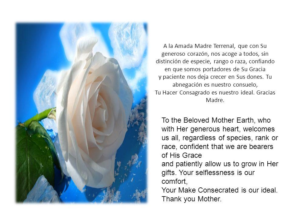 A la Amada Madre Terrenal, que con Su generoso corazón, nos acoge a todos, sin distinción de especie, rango o raza, confiando en que somos portadores de Su Gracia y paciente nos deja crecer en Sus dones.