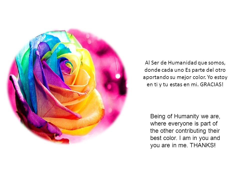 Al Ser de Humanidad que somos, donde cada uno Es parte del otro aportando su mejor color.