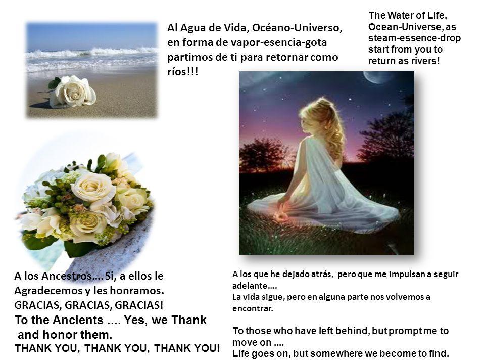 Al Agua de Vida, Océano-Universo, en forma de vapor-esencia-gota partimos de ti para retornar como ríos!!.