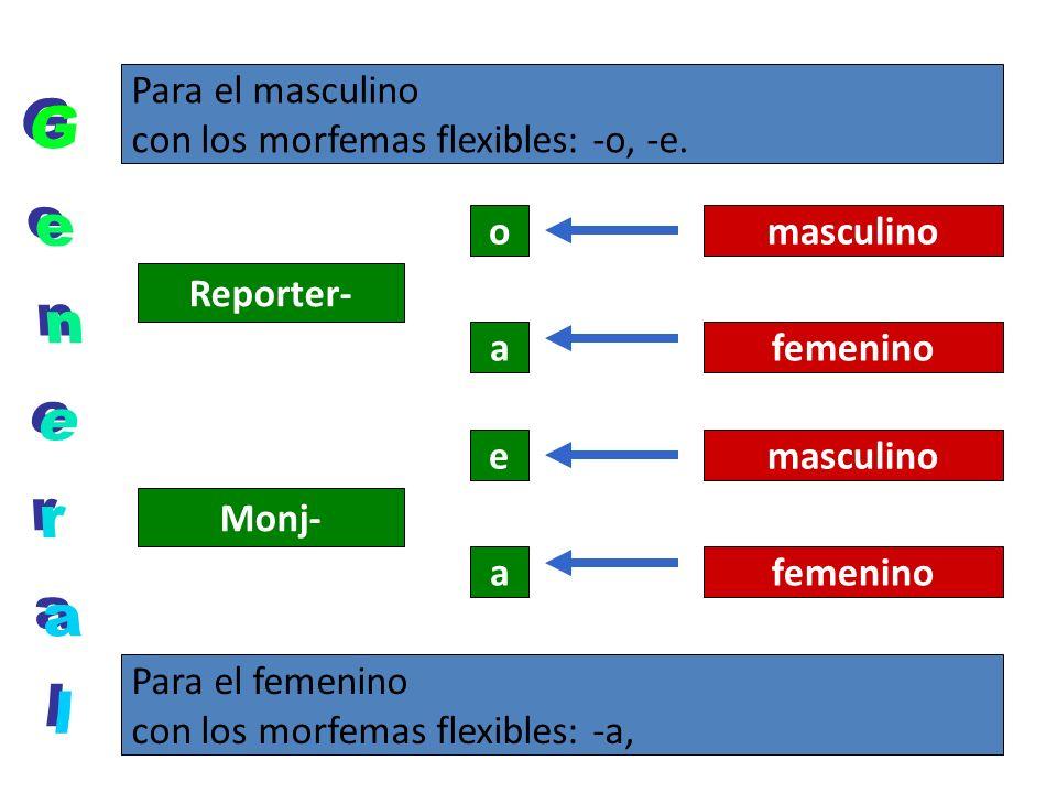 Para el masculino con los morfemas flexibles: -o, -e. Para el femenino con los morfemas flexibles: -a, Reporter- o a masculino femenino Monj- e a masc