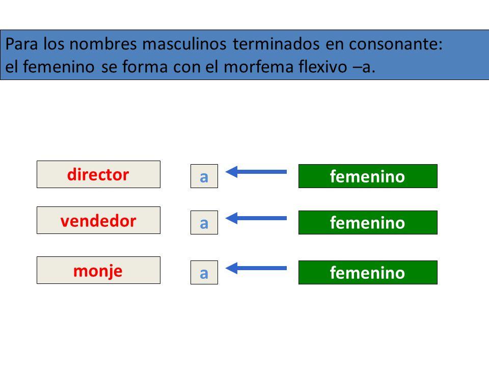 Para los nombres masculinos terminados en consonante: el femenino se forma con el morfema flexivo –a. director afemenino monje afemenino vendedor afem