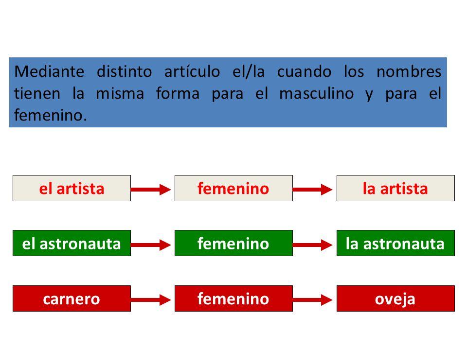 el artistafemeninola artista el astronautafemeninola astronauta carnerofemeninooveja Mediante distinto artículo el/la cuando los nombres tienen la mis
