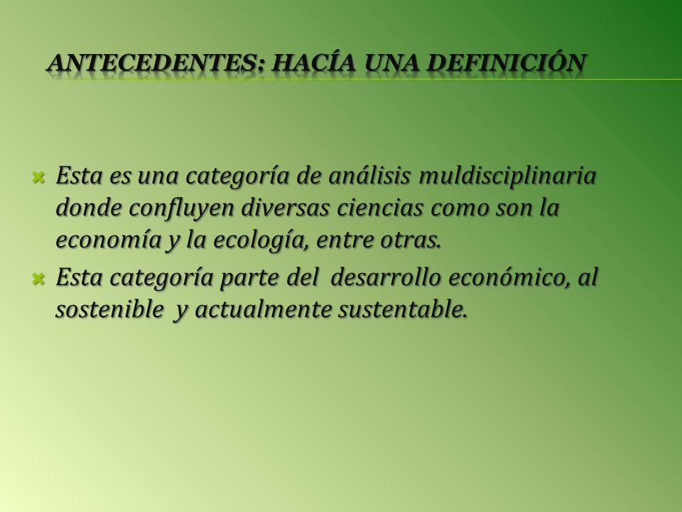 Esta es una categoría de análisis muldisciplinaria donde confluyen diversas ciencias como son la economía y la ecología, entre otras.