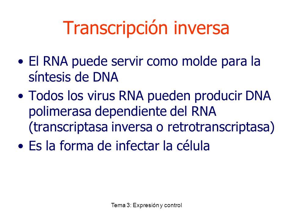 Tema 3: Expresión y control Transcripción inversa El RNA puede servir como molde para la síntesis de DNA Todos los virus RNA pueden producir DNA polim