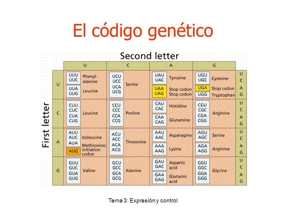 Tema 3: Expresión y control El código genético
