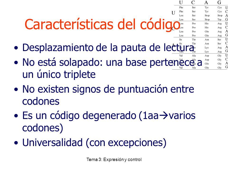 Tema 3: Expresión y control Desplazamiento de la pauta de lectura No está solapado: una base pertenece a un único triplete No existen signos de puntua
