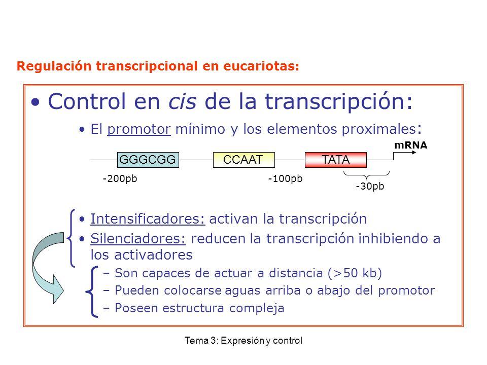 Tema 3: Expresión y control Control en cis de la transcripción: El promotor mínimo y los elementos proximales : Intensificadores: activan la transcrip