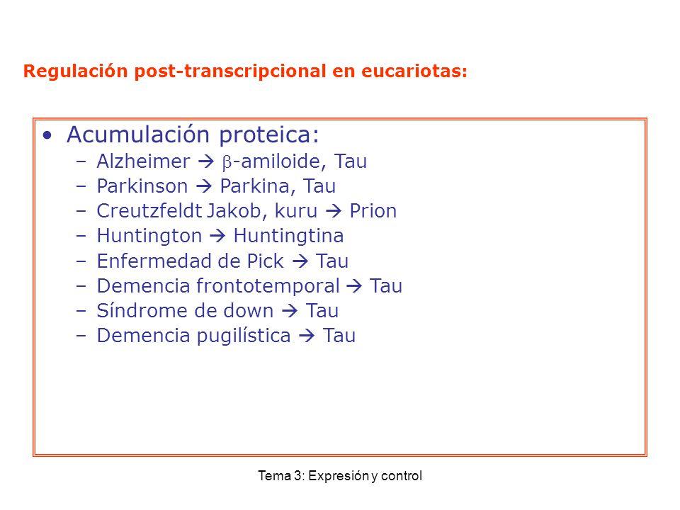 Tema 3: Expresión y control Regulación post-transcripcional en eucariotas: Acumulación proteica: –Alzheimer -amiloide, Tau –Parkinson Parkina, Tau –Cr