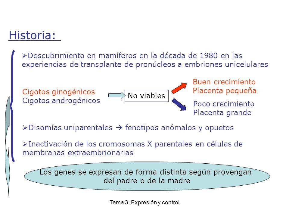Tema 3: Expresión y control Historia: Descubrimiento en mamíferos en la década de 1980 en las experiencias de transplante de pronúcleos a embriones un