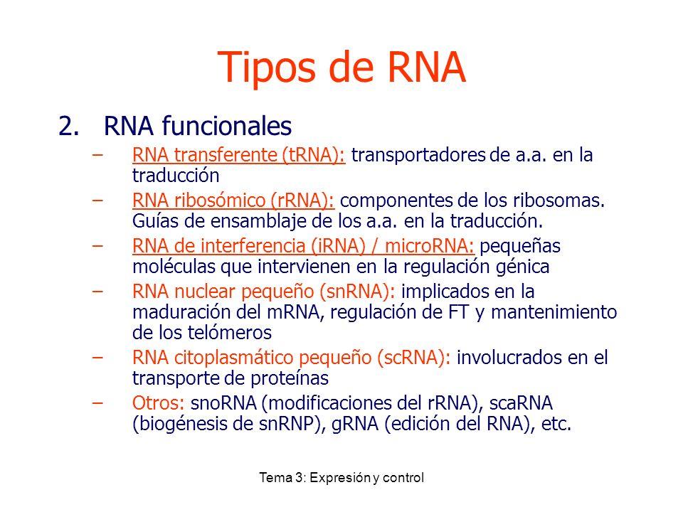 Tema 3: Expresión y control Tipos de RNA 2.RNA funcionales –RNA transferente (tRNA): transportadores de a.a. en la traducción –RNA ribosómico (rRNA):