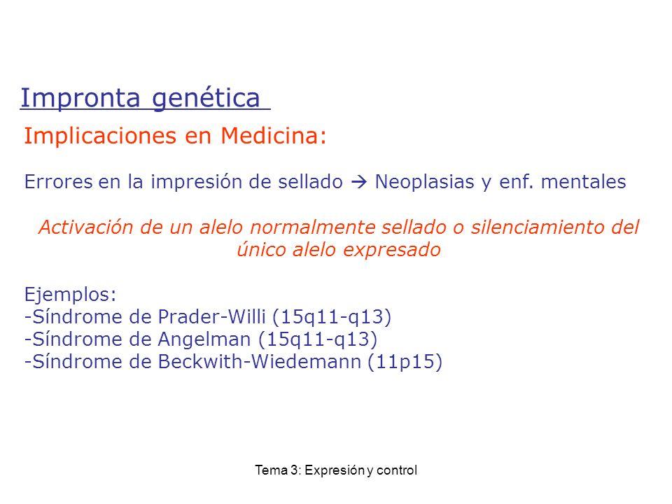 Tema 3: Expresión y control Impronta genética Implicaciones en Medicina: Errores en la impresión de sellado Neoplasias y enf. mentales Activación de u
