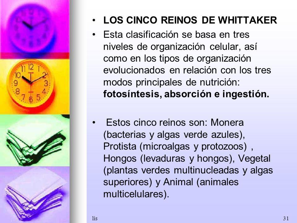 lis31 LOS CINCO REINOS DE WHITTAKER Esta clasificación se basa en tres niveles de organización celular, así como en los tipos de organización evolucio
