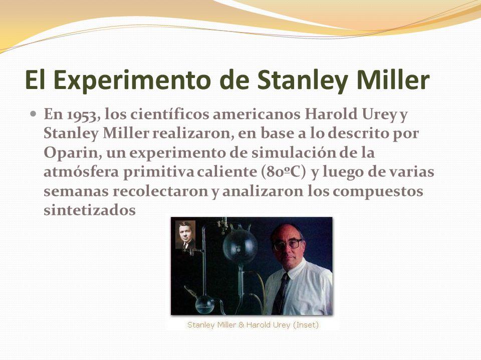 El Experimento de Stanley Miller En 1953, los científicos americanos Harold Urey y Stanley Miller realizaron, en base a lo descrito por Oparin, un experimento de simulación de la atmósfera primitiva caliente (80ºC) y luego de varias semanas recolectaron y analizaron los compuestos sintetizados