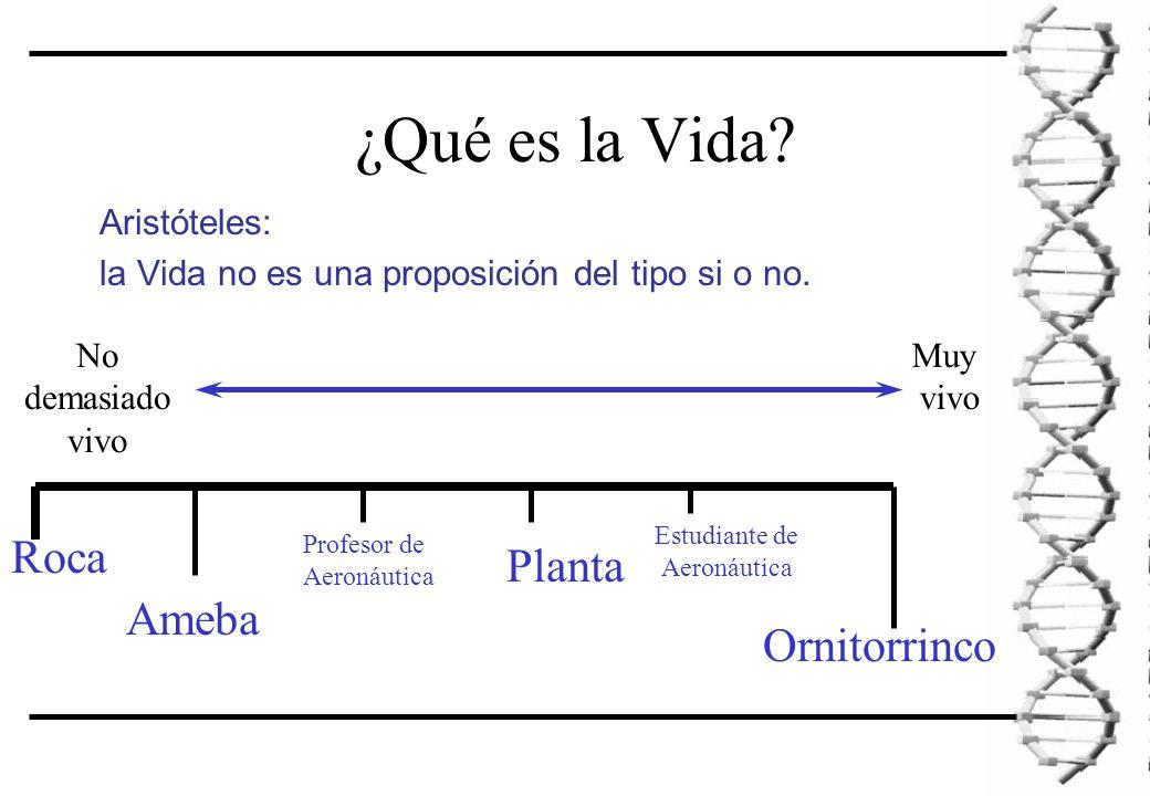 ¿Qué es la Vida. Aristóteles: la Vida no es una proposición del tipo si o no.