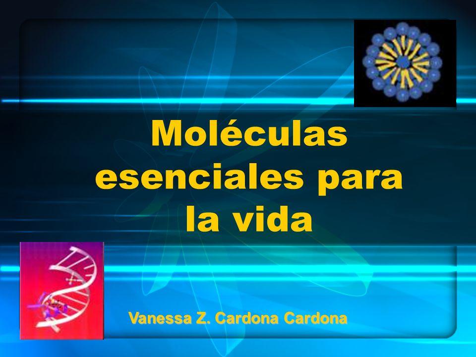 Moléculas esenciales para la vida Vanessa Z. Cardona Cardona