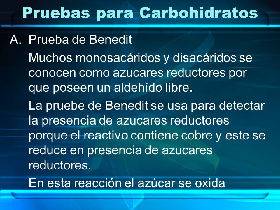 Pruebas para Carbohidratos A.Prueba de Benedit Muchos monosacáridos y disacáridos se conocen como azucares reductores por que poseen un aldehído libre