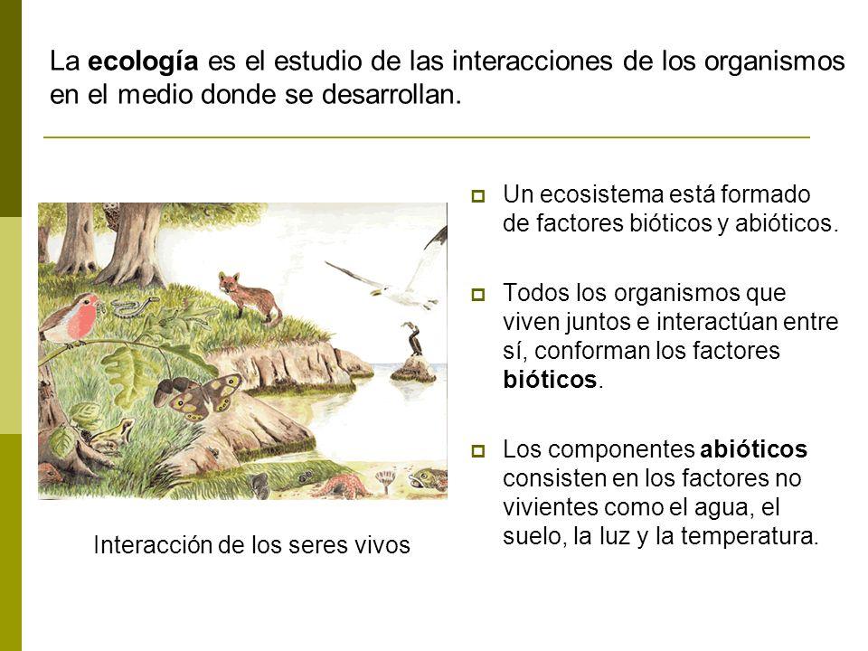 Interacción de los seres vivos Un ecosistema está formado de factores bióticos y abióticos. Todos los organismos que viven juntos e interactúan entre