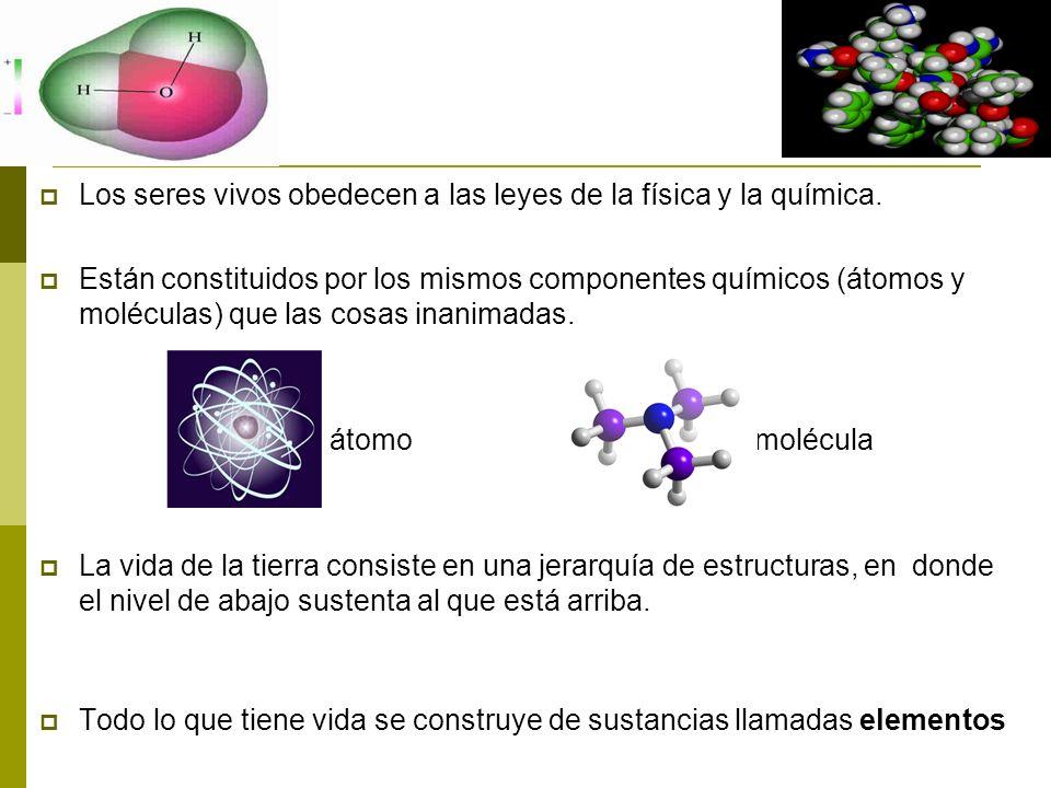 Los seres vivos obedecen a las leyes de la física y la química. Están constituidos por los mismos componentes químicos (átomos y moléculas) que las co