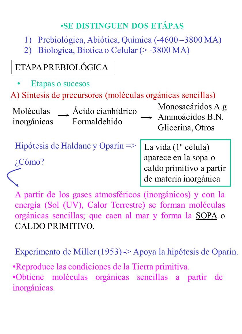 Evolucion Quimica Abiotica Abiótica Química 4600