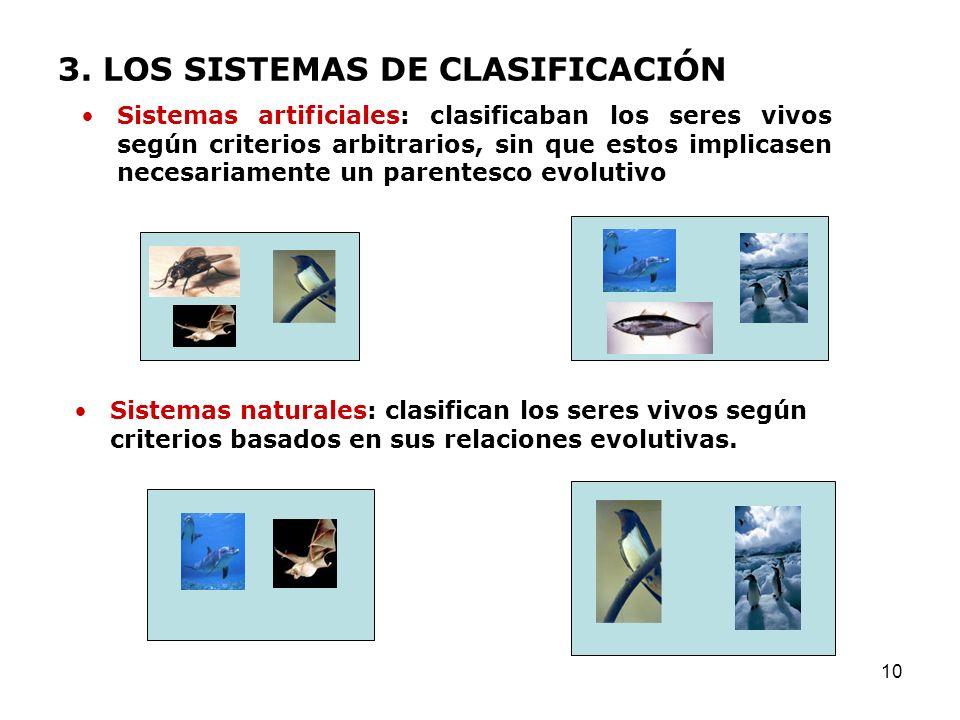 10 3. LOS SISTEMAS DE CLASIFICACIÓN Sistemas artificiales: clasificaban los seres vivos según criterios arbitrarios, sin que estos implicasen necesari
