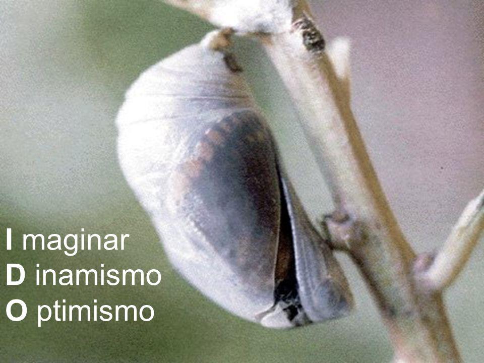 I maginar D inamismo O ptimismo