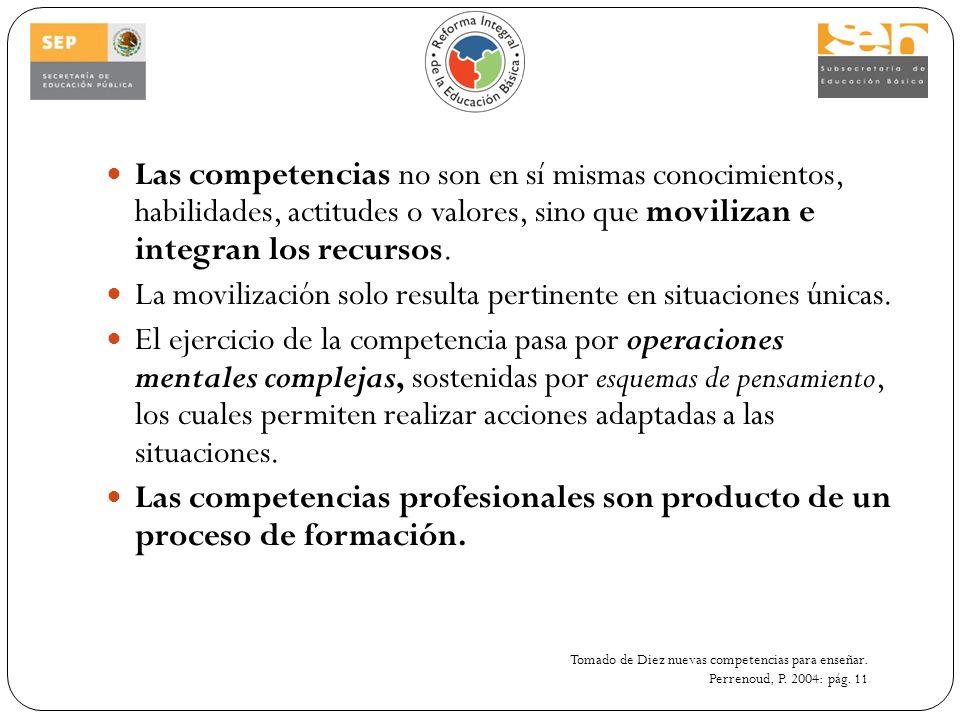 Las competencias no son en sí mismas conocimientos, habilidades, actitudes o valores, sino que movilizan e integran los recursos. La movilización solo