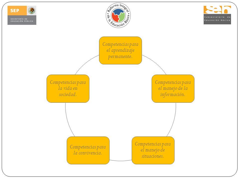 Competencias para el aprendizaje permanente.Competencias para el manejo de la información.
