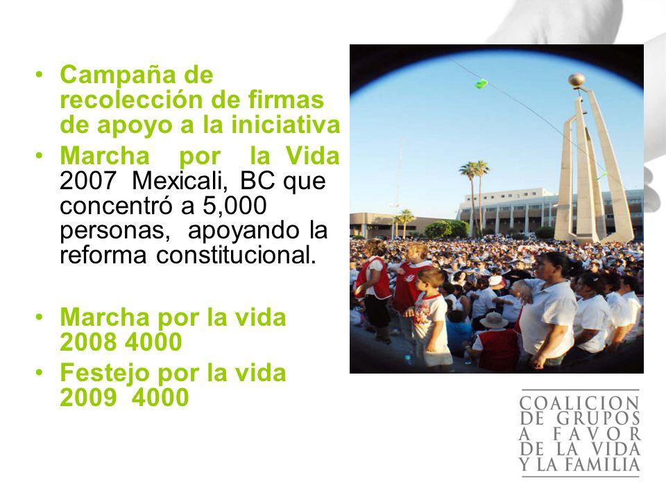 El apoyo a la propuesta se concentró en las siguientes actividades: Campaña de recolección de firmas de apoyo a la iniciativa Marcha por la Vida 2007