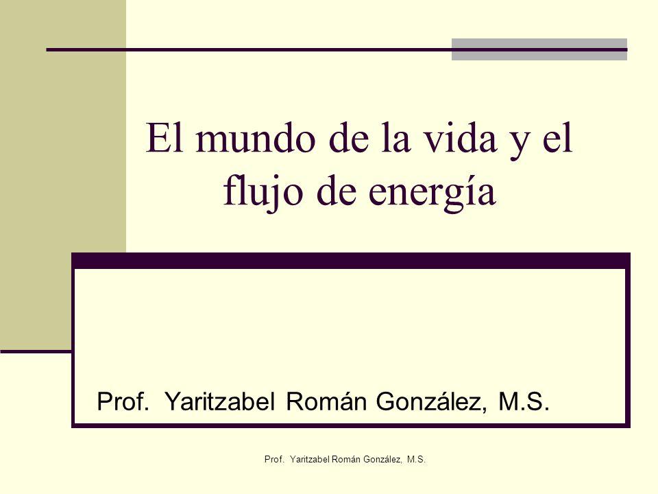 Prof. Yaritzabel Román González, M.S. El mundo de la vida y el flujo de energía Prof. Yaritzabel Román González, M.S.