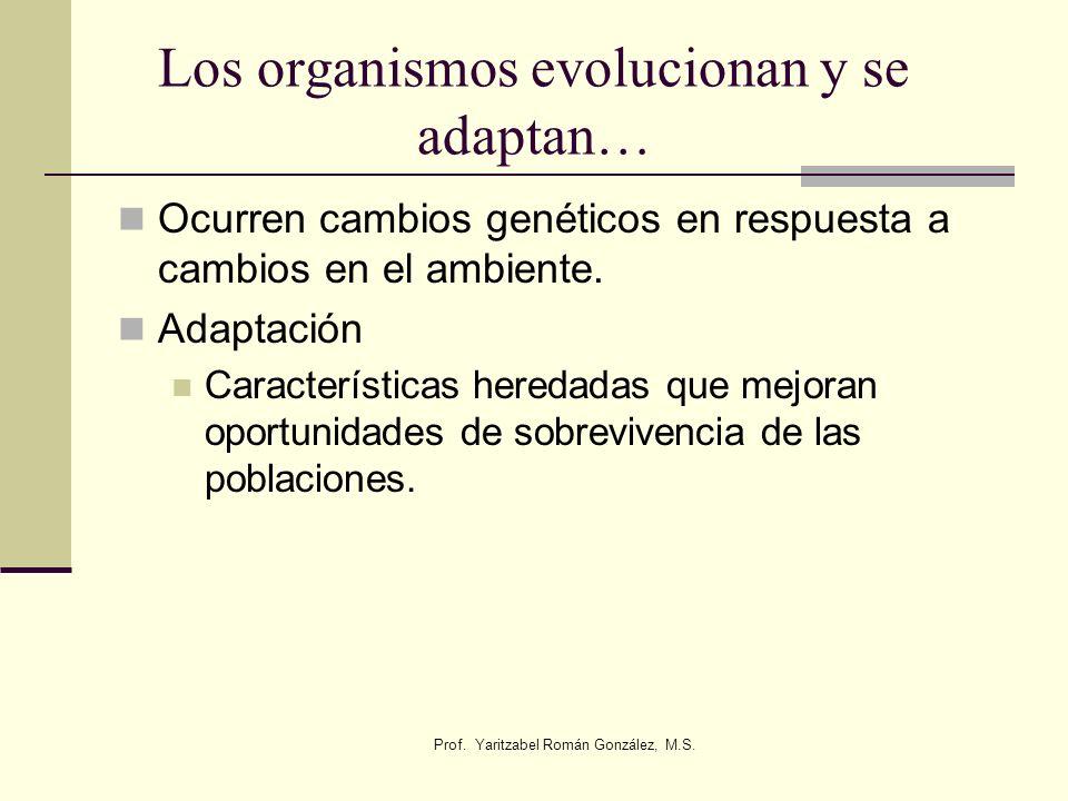 Prof. Yaritzabel Román González, M.S. Los organismos evolucionan y se adaptan… Ocurren cambios genéticos en respuesta a cambios en el ambiente. Adapta