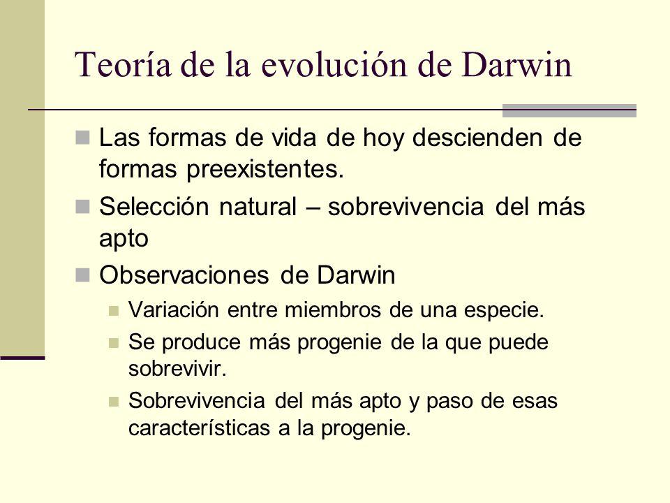 Teoría de la evolución de Darwin Las formas de vida de hoy descienden de formas preexistentes. Selección natural – sobrevivencia del más apto Observac