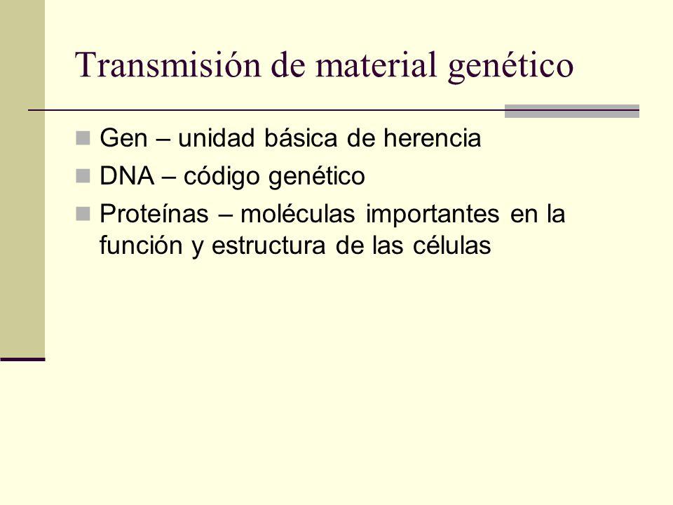 Transmisión de material genético Gen – unidad básica de herencia DNA – código genético Proteínas – moléculas importantes en la función y estructura de