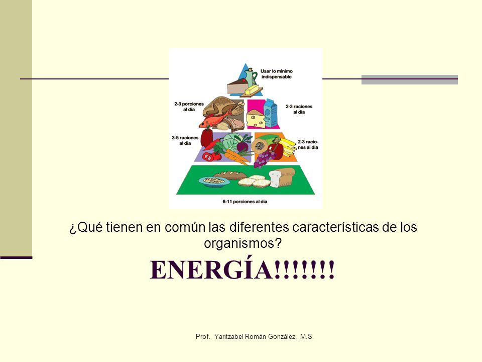 ENERGÍA!!!!!!! ¿Qué tienen en común las diferentes características de los organismos? Prof. Yaritzabel Román González, M.S.