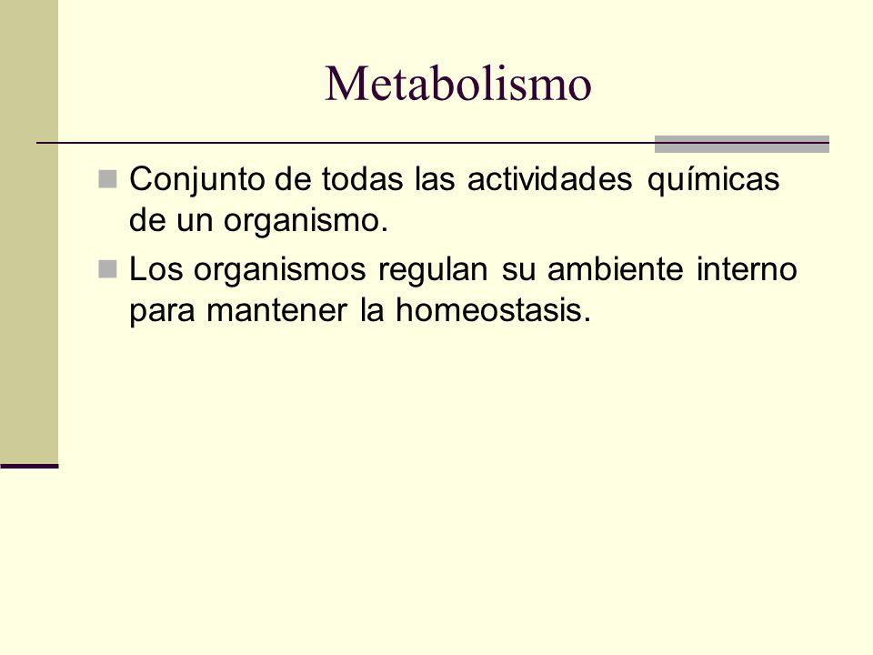 Metabolismo Conjunto de todas las actividades químicas de un organismo. Los organismos regulan su ambiente interno para mantener la homeostasis.