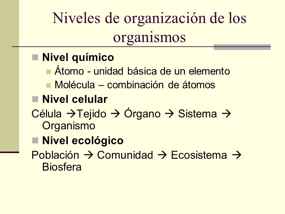 Niveles de organización de los organismos Nivel químico Átomo - unidad básica de un elemento Molécula – combinación de átomos Nivel celular Célula Tej