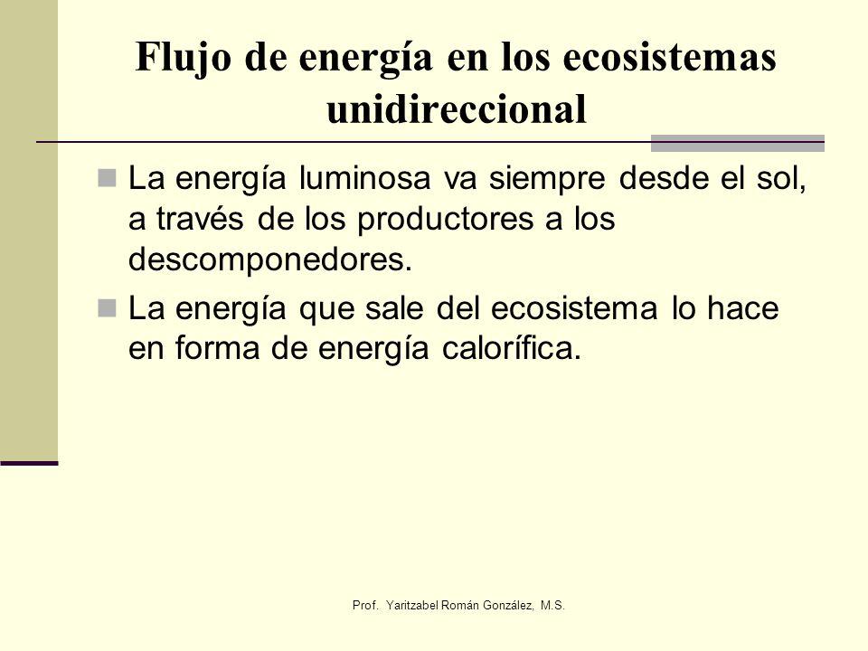 Flujo de energía en los ecosistemas unidireccional La energía luminosa va siempre desde el sol, a través de los productores a los descomponedores. La