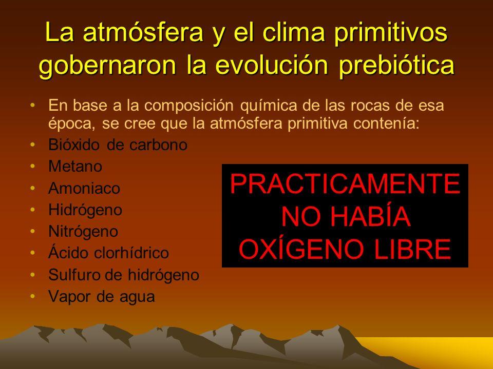 En base a la composición química de las rocas de esa época, se cree que la atmósfera primitiva contenía: Bióxido de carbono Metano Amoniaco Hidrógeno Nitrógeno Ácido clorhídrico Sulfuro de hidrógeno Vapor de agua La atmósfera y el clima primitivos gobernaron la evolución prebiótica PRACTICAMENTE NO HABÍA OXÍGENO LIBRE
