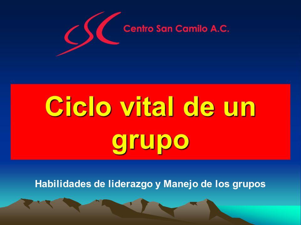 Ciclo vital de un grupo Habilidades de liderazgo y Manejo de los grupos