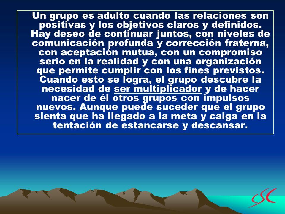 Un grupo es adulto cuando las relaciones son positivas y los objetivos claros y definidos. Hay deseo de continuar juntos, con niveles de comunicación