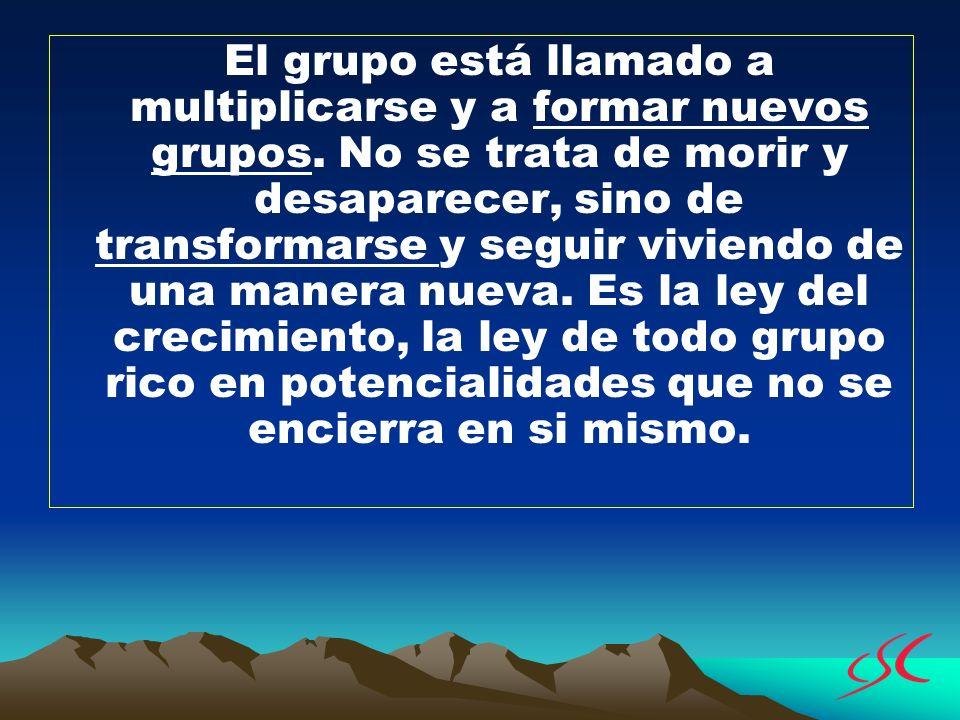 El grupo está llamado a multiplicarse y a formar nuevos grupos. No se trata de morir y desaparecer, sino de transformarse y seguir viviendo de una man
