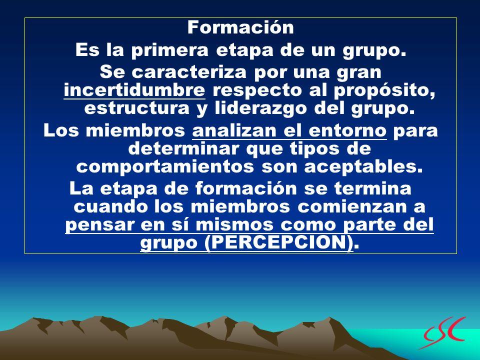 Formación Es la primera etapa de un grupo. Se caracteriza por una gran incertidumbre respecto al propósito, estructura y liderazgo del grupo. Los miem