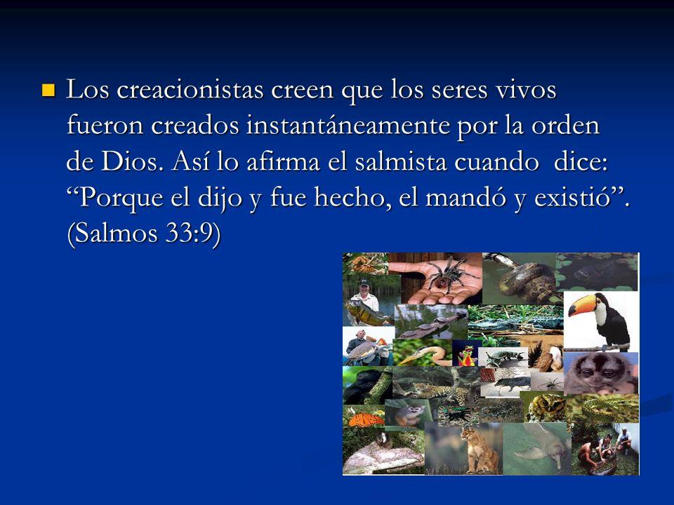 Los creacionistas creen que los seres vivos fueron creados instantáneamente por la orden de Dios. Así lo afirma el salmista cuando dice: Porque el dij