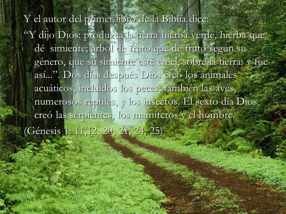 Y el autor del primer libro de la Biblia dice: Y dijo Dios: produzca la tierra hierba verde, hierba que dé simiente; árbol de fruto que dé fruto según