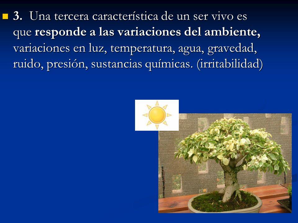 3. Una tercera característica de un ser vivo es que responde a las variaciones del ambiente, variaciones en luz, temperatura, agua, gravedad, ruido, p