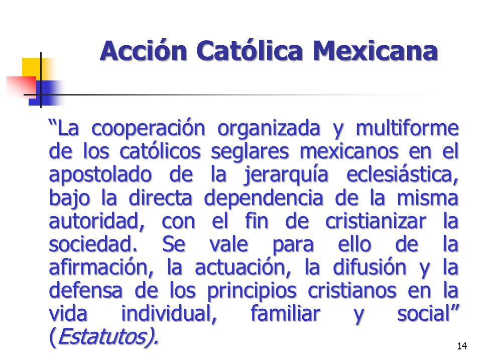 14 Acción Católica Mexicana La cooperación organizada y multiforme de los católicos seglares mexicanos en el apostolado de la jerarquía eclesiástica,