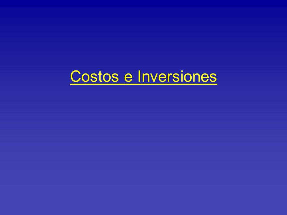Costos e Inversiones