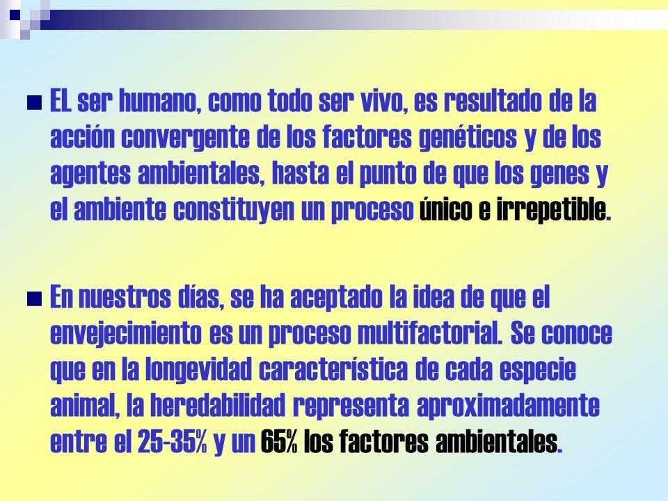 EL ser humano, como todo ser vivo, es resultado de la acción convergente de los factores genéticos y de los agentes ambientales, hasta el punto de que